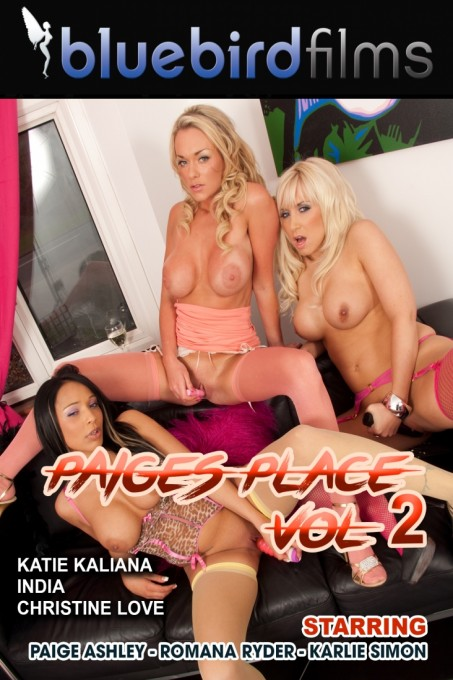 Paiges Place Vol 2